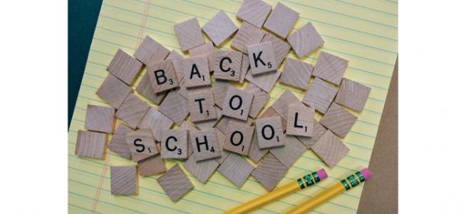 Brownieland Pictures Spotlights School Videos